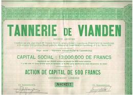 Action Ancienne - Tannerie De Vianden Société Anonyme - Titre De 1930  - VF - Industrie