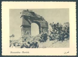 Tunisie KASSERINE - Túnez