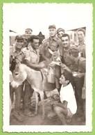 Ilha Do Sal - REAL PHOTO - Militar - Burro - Donkey - Cabo Verde - Cap Vert