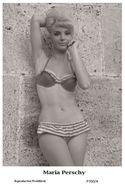 MARIA PERSCHY - Film Star Pin Up PHOTO POSTCARD - P700-4 Swiftsure Postcard - Postales