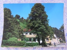 Bosnia Hercegovina - Unused Postcard - Srebrenica - Hotel Partizan - Bosnie-Herzegovine