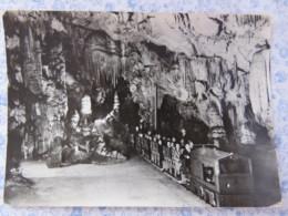 Slovenia - Unused Postcard - Postojnska Jama Cave - Slovénie