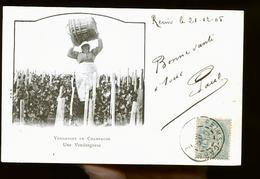 VENDANGES EN CHAMPAGNE TIRAGE 1900              JLM - Reims