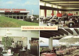 Austria > Lower-Austria > Wiener Neustadt, Föhrenberg, Wienerwald, Sudautobahn, Mint - Wiener Neustadt