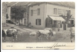 Saint Leger  Abreuvoir De Choupa 1903  DVD 9157 - Saint-Léger