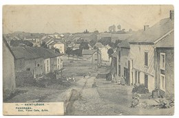 11 Saint Leger  Panorama Rue Du Cassis 1909 Ed Victor Caên Arlon - Saint-Léger