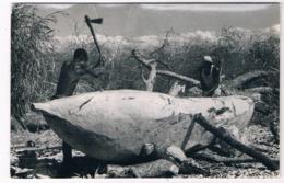 AFR-1208   MALAWI : Making A Boat - Malawi