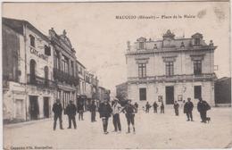 Hérault :  MAUGUIO :  Place De  La  Mairie  1916 - Mauguio