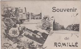 Ille  Et  Vilaine :  ROMILLE , Romillé :  Souvenir - France
