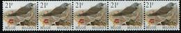 PIA - BEL -1998 - Uccello : Grive Litorne -  (Yv 2792x5) - Nuevos