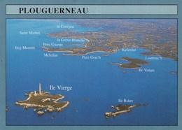 PLOUGUERNEAU VUE GENERALE DE L'ILE VIERGE (dil406) - Plouguerneau