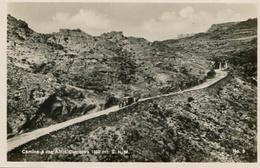 CAMINO A LOS ALTOS CUMBRES 1350 MT. S.N.M., CORDOBA, ARGENTINA. CIRCA 1929 POSTAL POSTCARD B/N TBE -LILHU - Argentinië