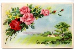 Groeten Uit Tienen 1955 Verstuurd Aan Pecard, Vankantieverblijf Tiense Raffinaderij , Konijnweg, De Panne - Tienen