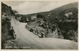 CAMINO A ONGAMIRA, CORDOBA, ARGENTINA. CIRCA 1929 POSTAL POSTCARD B/N TBE -LILHU - Argentinië
