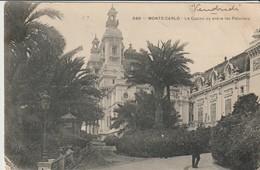 CPA - MONTE CARLO - LE CASINO VU ENTRE LES PALMIERS - 340 - - Monte-Carlo