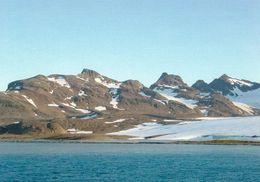 1 AK Antarctica South Georgia Island - Bay Of Isles * South Atlantic Ocean - Britisches Überseegebiet - Cartes Postales