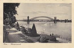 Bonn Rheinpromenade - Bonn