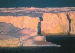 1 AK Antarctica Antarktis Terre Adelie * Penguins Resting On Iceberg With Glacier In The Background * - Postcards