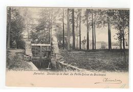 Aarschot. Sluiske Op De Vest 1904 - Aarschot