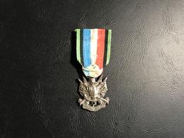 Medaille Guerre 1870-71 Oublier...jamais - France