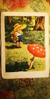 BIG AMANITA  - OLD Soviet PC 1957 -  Mushroom - Champignon - Champignons