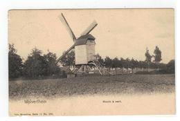 Wolvertem  Wolverthem  Moulin à Vent - Meise