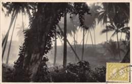 Indonésie - Other / 29 - Borneo - Indonésie