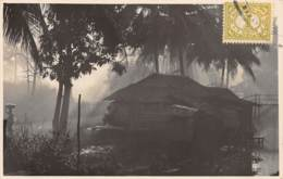 Indonésie - Other / 30 - Borneo - Indonésie