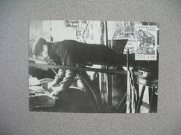 Carte-Maximum 1987   N° 2467 - Cartes-Maximum