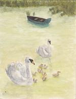 Dessin Couleur Fait Main D'une Famille De Cygnes - Paintings