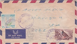 LEBANON LIBAN EGYPTE 1965 LETTRE COVER DJIB DJENINE POSTMARK - Liban