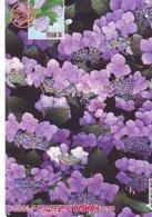 Carte Prépayée Japon * FLEURES * Stamp & Phonecard On Japan Phonecard (314)  Timbre + Télécarte *  Briefmarken & TK - Timbres & Monnaies