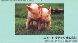 Télécarte Japon *  YEAR Of The PIG (己亥) ZODIAC  (601) COCHON * PHONECARD JAPAN * TK * SCHWEIN * PORCO * VARKEN - Dierenriem