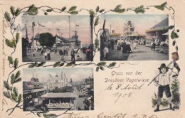 Dresden (Saxony) Germany, Gruss Von Der Dresdner Vogelwiese, Johannstädter Ufer Location, 1900s Vintage Postcard - Dresden