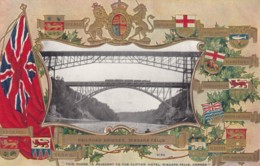Niagra Falls Ontario Canada, Provincial Crests, Railroad Bridges Across Falls, 1900s/10s Vintage Embossed Postcard - Niagara Falls