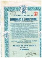 Action Ancienne - Société Anonyme Des Charbonnages De L'Arbre St-Michel- Titre De 1921 - Rare - - Mines