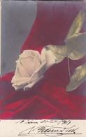 ROSA ROSE CPA CIRCULEE 1903 COLORISE EDITEUR VARSI L'ARGENTINE. STAMP A PAIR-RARE- BLEUP - Bloemen