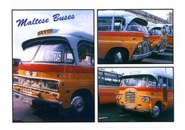 Malta. Maltese Buses. Bus Maltais. Malte. - Malte