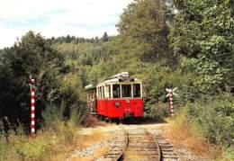 CPM - EREZEE - Tramway Touristique De L'Aisne - Autorail AR 133 Et Baladeuse 8944 Au Pont De Forges - Erezée