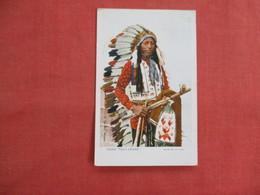 Chief  Tall Crane  Glitter Added -pre 1907 UDB    Ref 3111 - Native Americans
