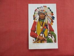 Chief Afraid Of Eagle-- Glitter Added   -pre 1907 UDB    Ref 3111 - Indiani Dell'America Del Nord