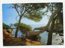 SPAIN - AK 341282 Mallorca - Cala Ratjada - Mallorca