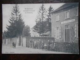 Wolfsdonck   Gemeenteschool En Pastorij    Wolfsdonk - Belgique