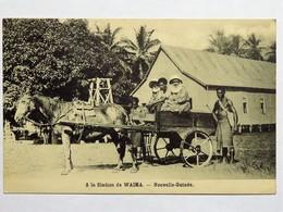 C.P.A. : Nouvelle Guinée : A La Station De WAIMA, Animé - Papouasie-Nouvelle-Guinée