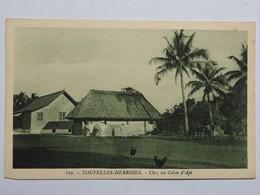 C.P.A. : Nouvelles Hébrides : Chez Un Colon D' API, Animé, Poules - Vanuatu