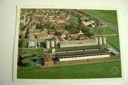 TRUCCAZZANO CASCINA CORTENUOVA  MILANO  AZIENDA    Agriculture   Postcard Circulé  Agricoltura - Culture