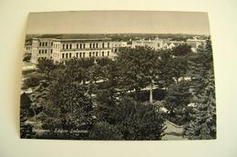 PUTIGNANO  Edificio Scolastico  SCUOLA  ECOLE SCHOOL SCHULE    PUGLIA   NON VIAGGIATA  IMMAGINE OPACA   ARCH39 - Bari
