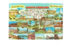 Cpm Etats-Unis > NC - North Carolina Tabacco Bears In Smokies Ours Tweetsie Railroad Bateau Dessin Golf Pin'up Golfing - Etats-Unis