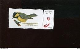 Belgie 2015 Buzin Zwarte Mees Birds 17/4/2017 SPAB Attenhoven DUOSTAMP MET TUSSENPERFORATIE - België