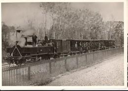 CP Du Museon Di Rodo - N° 613 Inauguration Ligne Longpré Au Tréport 1872 - Sonstige Gemeinden